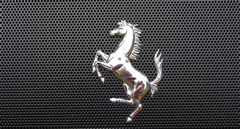 ferrari horse wallpaper photo ferrari logo emblem brands