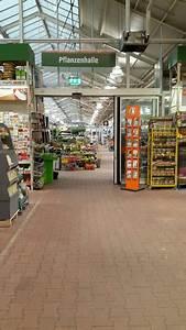 Markt De Mayen : bilder und fotos zu obi markt in mayen betzinger landstr ~ Eleganceandgraceweddings.com Haus und Dekorationen