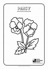 Coloring Pages Simple Easy Cool Pansy Toddlers Flowers Educational Children sketch template