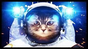 Tesla Dans Lespace : mon chat est dans l 39 espace miaou moon youtube ~ Nature-et-papiers.com Idées de Décoration