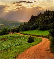 Winding Country Dirt Road