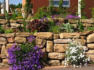 Pflanzen Für Trockenmauer : trockenmauer bepflanzen w rmed mmung der w nde malerei ~ Orissabook.com Haus und Dekorationen