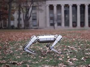 MIT's Mini Cheetah robot can trot, resist kicks and also ...