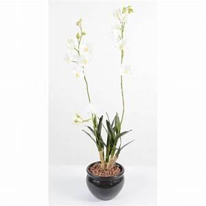 Plante D Intérieur Haute : plante verte d 39 int rieur haute fleurs plantes artificielles ~ Premium-room.com Idées de Décoration