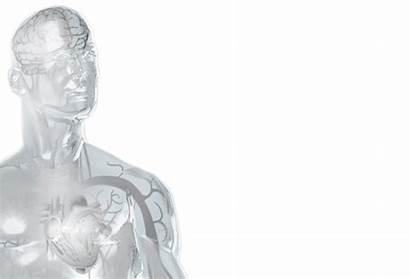 Stroke Risk Af Atrial Ictus Watchman Fibrillation