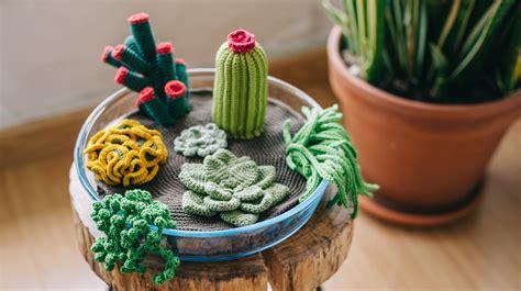 crochet  terrarium including   succulents