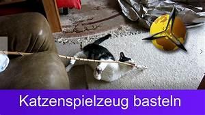 Katzenspielzeug Selber Machen Karton : katzenspielzeug selber machen basteln youtube ~ Frokenaadalensverden.com Haus und Dekorationen