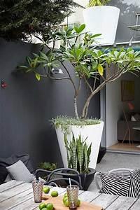 de 25 bedste ideer inden for terrasseideer pa pinterest With lovely idee amenagement jardin de ville 8 idees deco un balcon inspirant