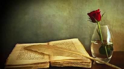 Books Rose Flowers Painting Quills Artwork Flower