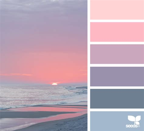Color Shore  Seeds, Heavens And Design Seeds