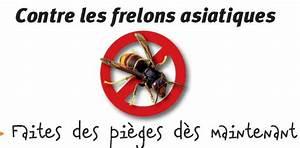 Comment Tuer Un Frelon : aide la protection de l abeille site de l 39 association l 39 arbre et l 39 abeille de javerdat ~ Melissatoandfro.com Idées de Décoration
