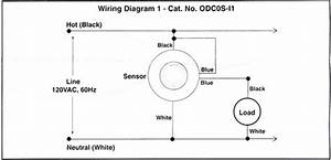 6 Pics Ceiling Occupancy Sensor Wiring Diagram And View