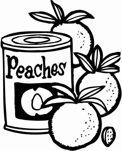 Peaches Canned Peach Drawing Crisp Getdrawings