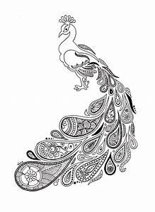 Dessin De Plume Facile : paon au plumage paisley alice gerfault dessins cr ations ~ Melissatoandfro.com Idées de Décoration