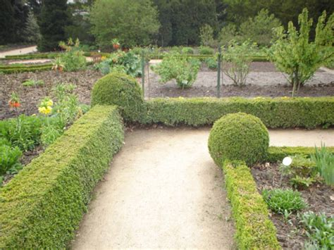 Asseln  Kellerasseln  Mein Garten Ratgeber