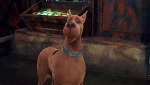 Scooby-Doo (Neil Fanning)   Scoobypedia   FANDOM powered ...