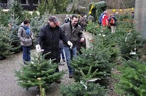 Künstliche Weihnachtsbäume Kaufen : tannenbaum kaufen my blog ~ Indierocktalk.com Haus und Dekorationen