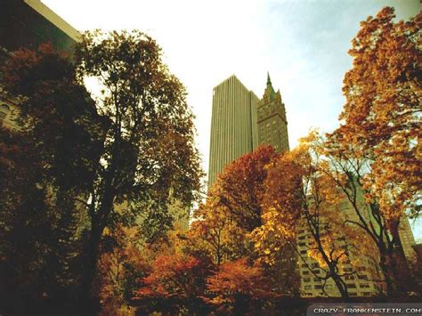 Fall Backgrounds New York by Autumn In New York Quotes Quotesgram