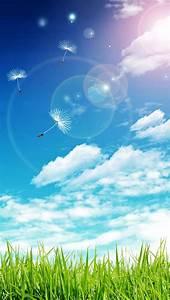 空とタンポポの綿毛 : 青(ブルー)系のクールでオシャレなiPhone壁紙
