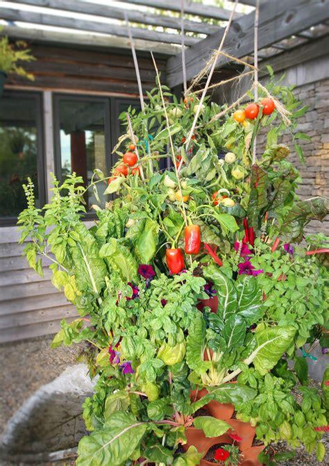 tower garden for garden tower 2 50 plant composting container garden