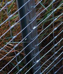 Sichtschutzzaun 2 50 M Hoch : wildzaun forstzaun 2 00m hoch je rolle 50m stark ebay ~ Bigdaddyawards.com Haus und Dekorationen