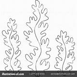 Seaweed Coloring Weed Algae Sea Clipart Drawing Template Ocean Illustration Printable Birijus Plants Awesome Printables Underwater Bannykh Alex Royalty Crafts sketch template