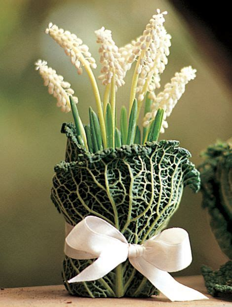 How To Bulbs Gorgeous Indoor Bloom And Color by 17 Best Images About Potted Plant Gift Wrap On