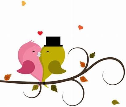 Cartoon Couple Birds Clipart Valentines Transparent Background