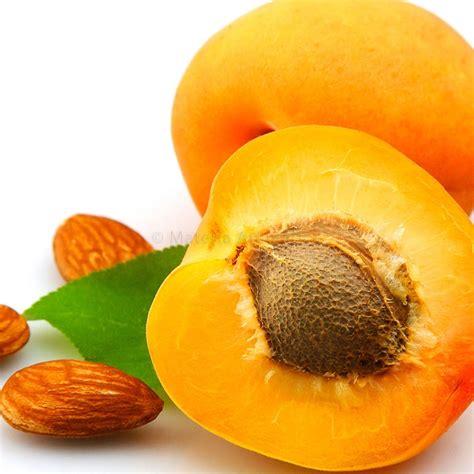 Apricot Kernel :: Materia Aromatica