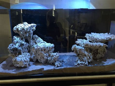 Reef Aquascape Designs by 25 Best Ideas About Reef Aquascaping On Reef