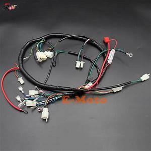 Engine Wiring Harness Wiring Loom 150cc 200cc 250cc Pit