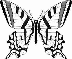 Simple Black And White Butterfly Clipart