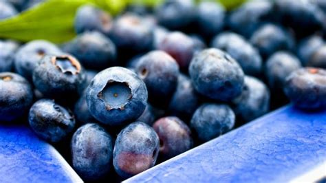 Memory Boosting Superfoods That Boost Brain Power