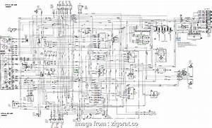 Bmw  Starter Wiring Diagram Brilliant Wiring Diagram  E46