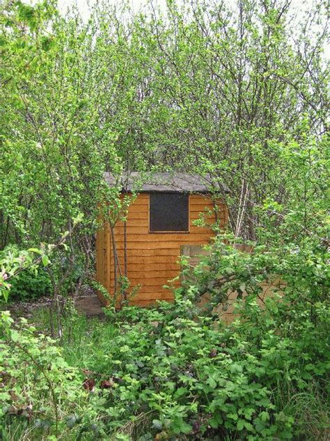 Boats And Hoes End Song by Hoe Shed From Allotment Near Brentford Owned