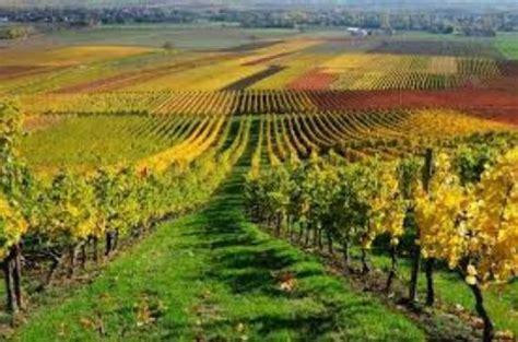 prix chambre novotel vignobles bordelais photo de pullman bordeaux lac