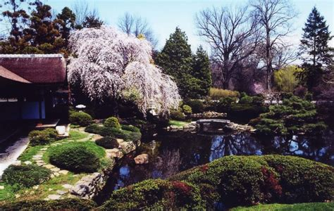 at the shofuso japanese house and garden one of the most