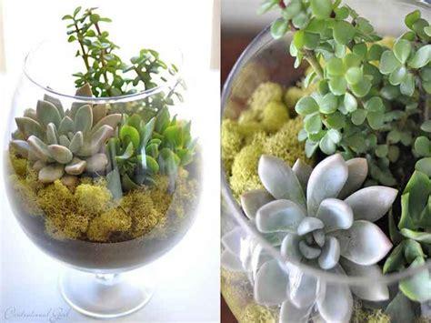 การจัดดอกไม้ในแก้วให้สวยงาม   สถาบันสอนเทคนิค ทริคการจัด ...