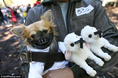 Halloween dog costumes: Pooches dressed to impress for