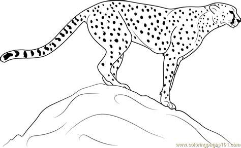 Kleurplaat Avalugg by Cheetah Standing On Rock Coloring Page Free Cheetah