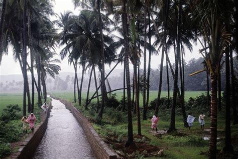goa   monsoon season essential travel guide