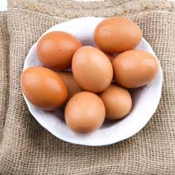 Fat and High Cholesterol Foods
