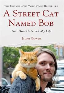 a cat named bob bowen macmillan
