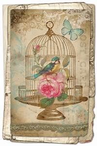 FREE Printable Birdcage Art Card - Avalon Rose Design