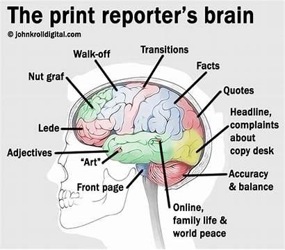 Diagram Mindset Cancer Brain National Institute Journalism