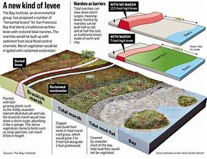 Bay Area Environmental Group Proposes Hybrid Levees For