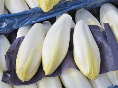 cuisiner l endive l 39 endive perle blanche du nord recette d 39 endives