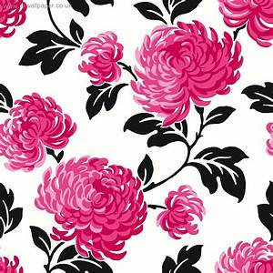 Black Pink and White Wallpaper - WallpaperSafari