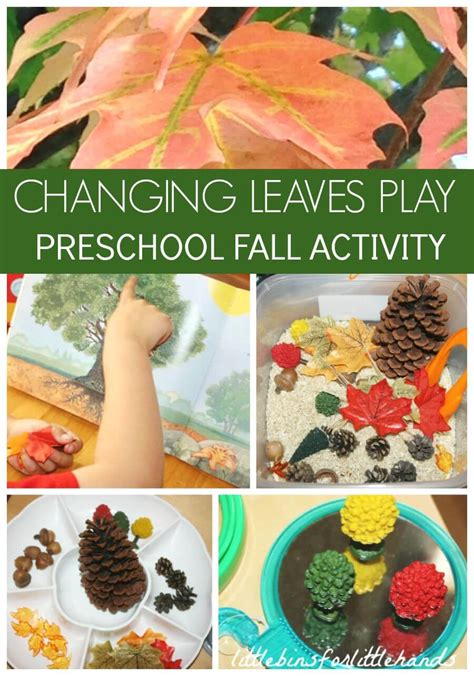 fall activity discovery table preschool fall sensory play 842 | Fall Activity Discovery Table Changing Leaves Ideas Preschool Fall PLay