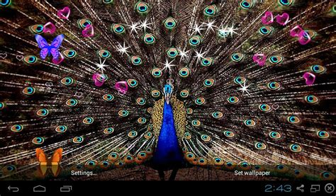 3d Wallpaper App by 3d Peacocks Live Wallpapers Apk Free